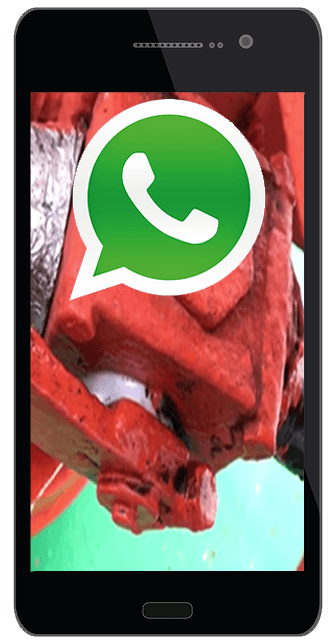 Whatsapp-Phone
